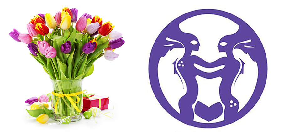Selecting Flowers According to Zodiac Signs | Blog