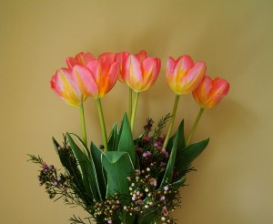 Bouquet of Tulip