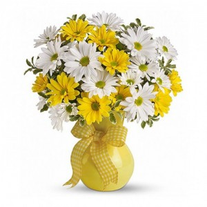 The Sweet Scent of Daisies