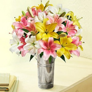 Bouquet of Lily Flowers