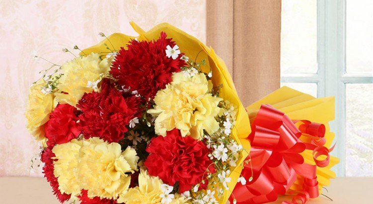 Red and Yellow Carnation