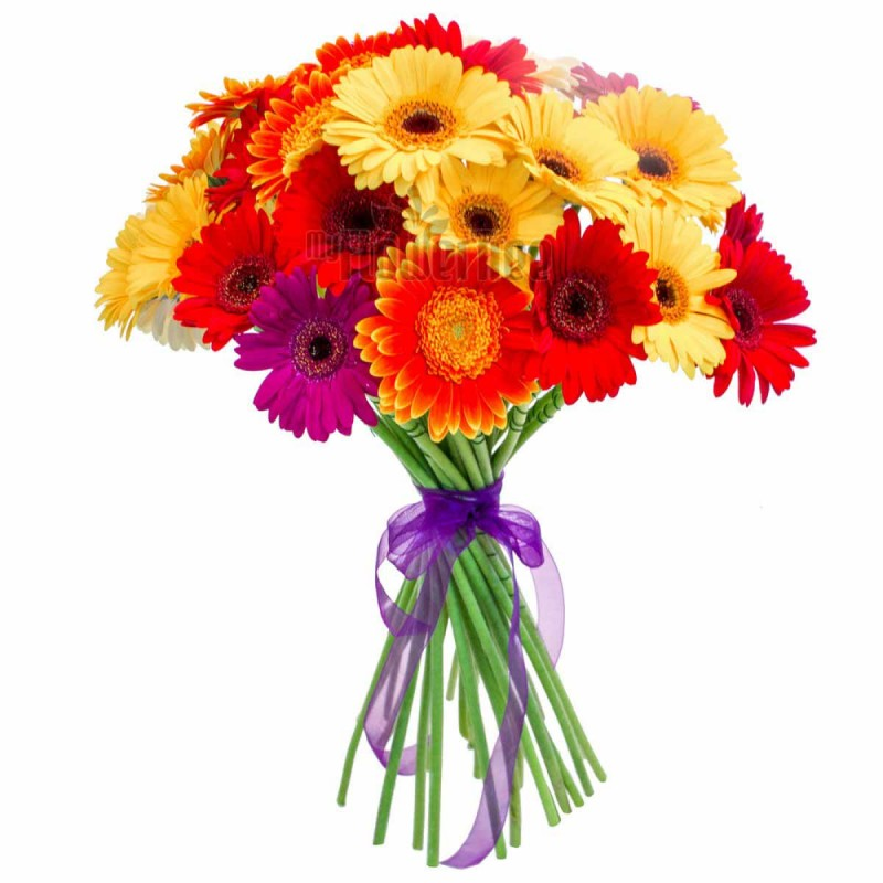 3 Reasons Why Flowers Express It The Best On Any Occasion