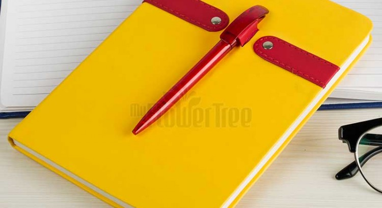 Diary or Pen