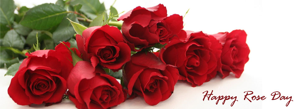 Roses-for-your-Love-this-Rose-Day-Bring-the-romance-in-your-Life