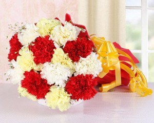 A Sprinkle of Carnations